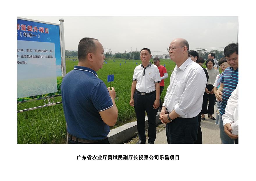 2020年广东省农业厅黄斌民副厅长视察公司乐昌项目