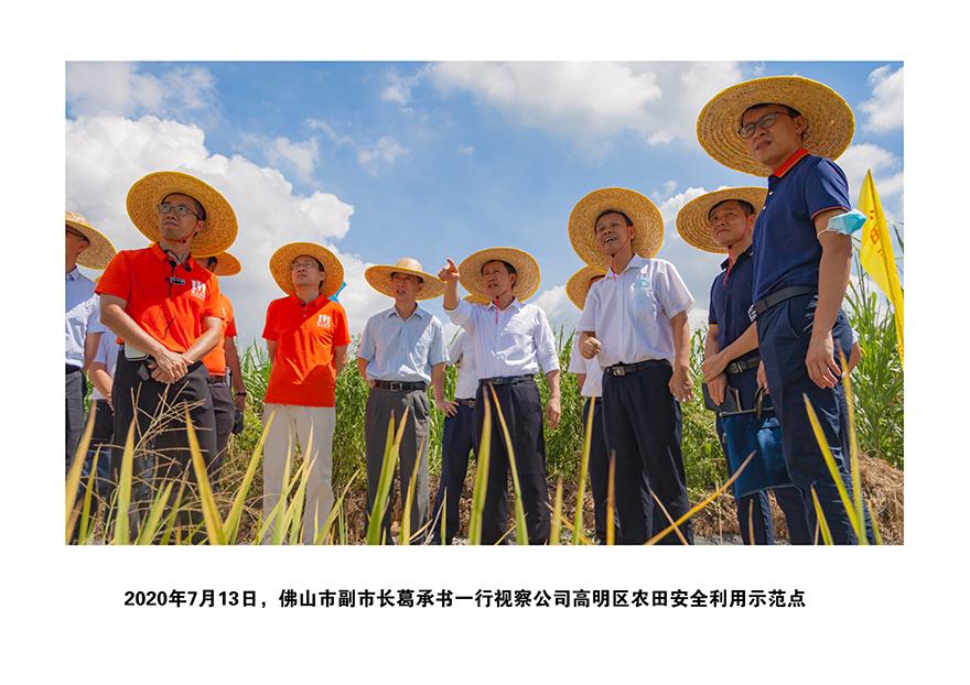 22020年佛山市副市长葛承书一行视察公司高明区农田安全利用示范点