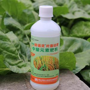 铁人环保降镉灵助力广州邱先生水稻种植