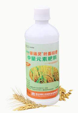 降隔灵 叶面阻控剂-水稻型