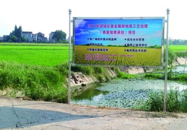 望城区2017年望城VIP+N项目5000亩重金属污染耕地修复