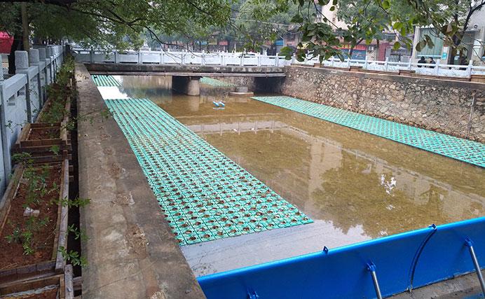 河涌生态修复工程