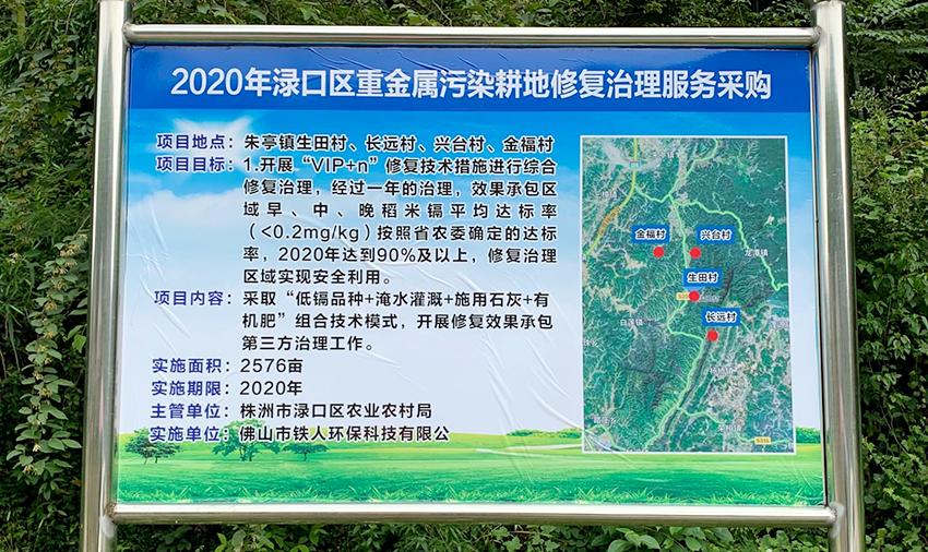 2020年渌口区重金属污染耕地修复治理服务项目