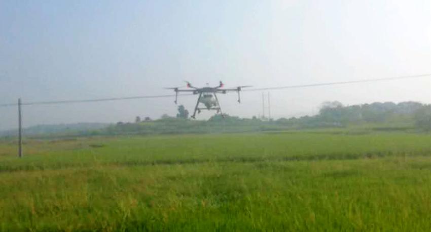 苏仙区2020年受污染耕地安全利用面上项目