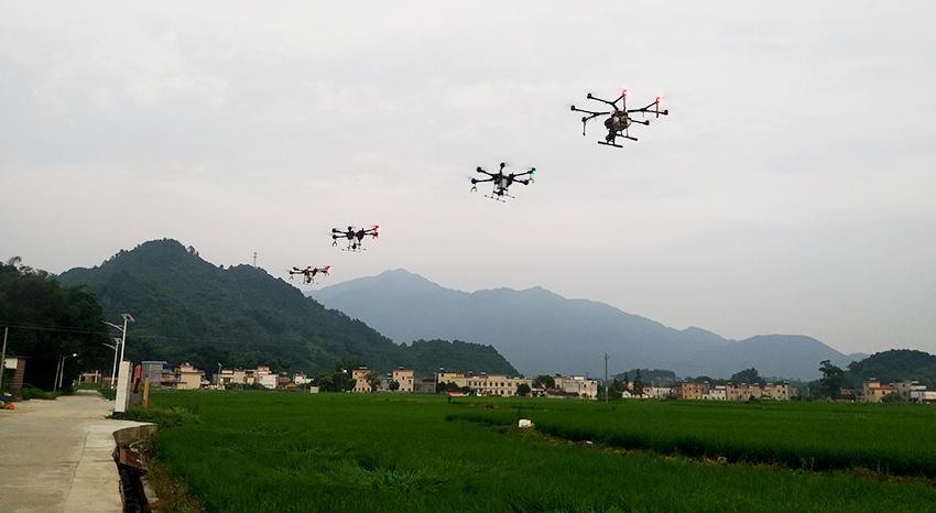 南宁市2020年农用地安全利用技术集成示范区(宾阳滨州镇)建设项目