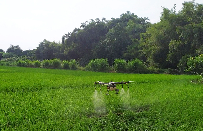 广东省郁南县2020年受污染耕地安全利用项目