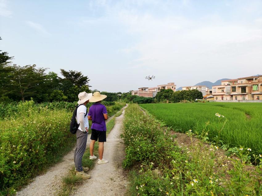 2020年阳江市植保植检和种子土肥环保管理站耕地安全利用试验示范项目